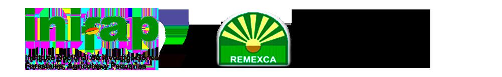 Remexca